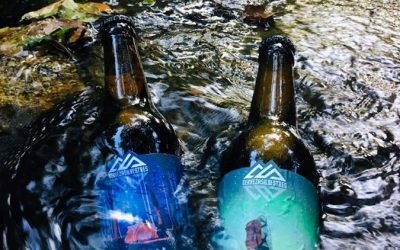 Improve the quality of craft beers with the recovery of their waste